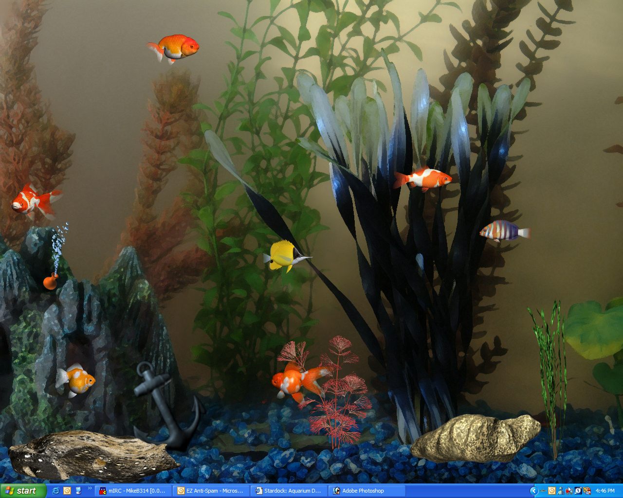 Aquarium desktop 2006 fish pack 1 with brad wardell for Desktop fish tank